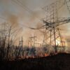 Are you responsible for wildfire/bushfire management for the public or private sector?